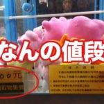 台湾のUFOキャッチャーに書かれてる値段って何?